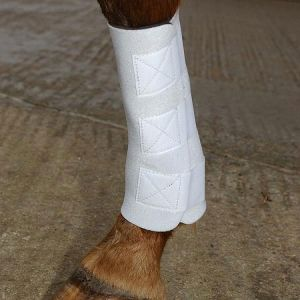 Equine Boots