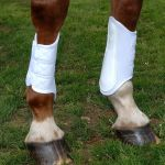 Save 10% on all Kitt Equine Boots until the end of July
