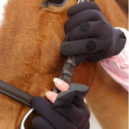 Neotech Neoprene Gloves - Yard, Riding, Fishing, Shooting