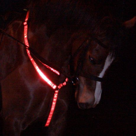 Hi Vis Reflecting Breastplate Red