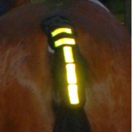 Hi Vis Reflecting Tail Guard Red