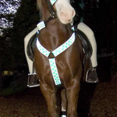 Hi Vis Reflecting Breastplate Green Chequer